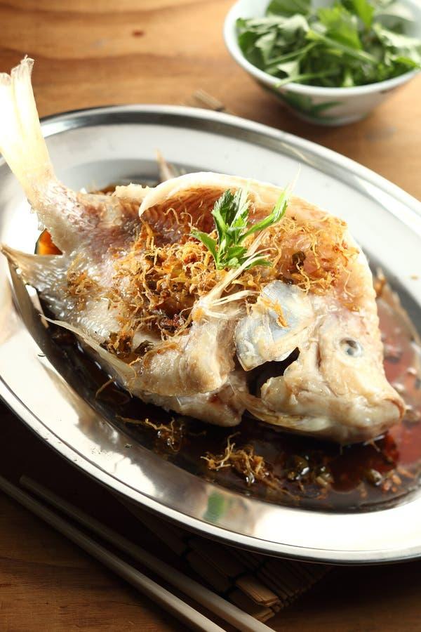 kinesisk fisk ångad stil royaltyfria bilder