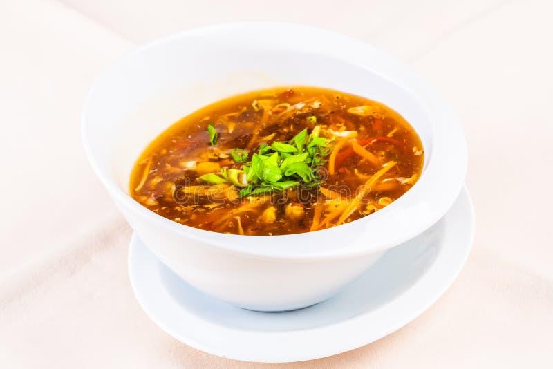 Kinesisk kryddig och sur soppa med höna royaltyfria bilder