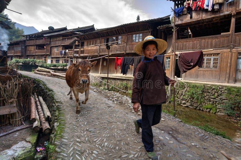 Kinesisk kvinnablytak längs kon för bygatabrunt, hållande rep royaltyfria bilder