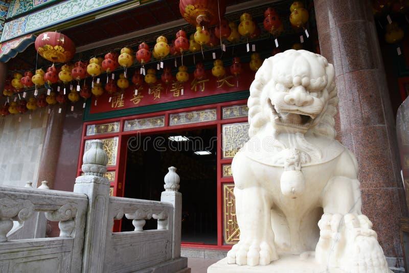 kinesisk lion royaltyfria bilder