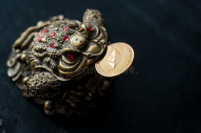 Kinesisk padda med det Etherium myntet royaltyfri bild