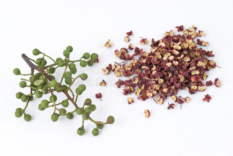 Kinesisk Sichuan peppar eller Peel för Prickly aska (den hua jiaen royaltyfri fotografi