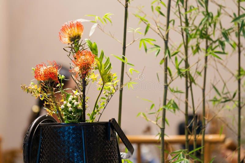 Kinesisk traditionell bonsai royaltyfria foton