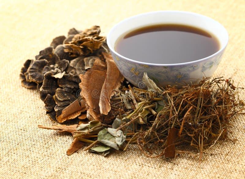 Kinesisk växt- medicin royaltyfria bilder
