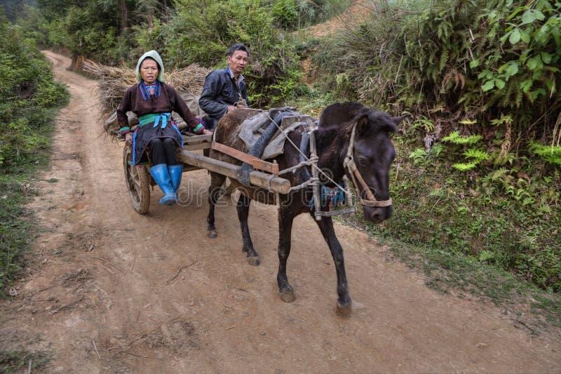 Kinesiska bönder som går tillbaka från fältarbete i hästvagnen royaltyfri bild