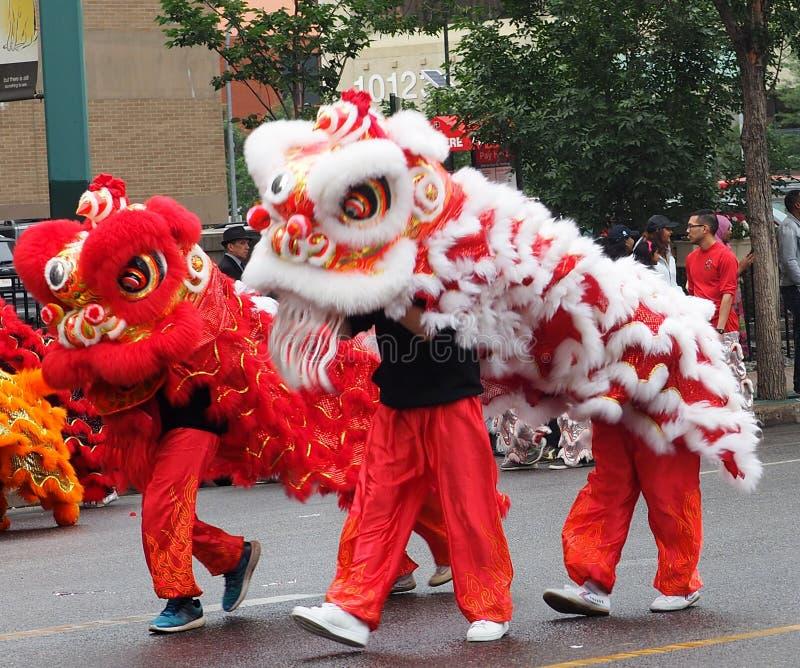 kinesiska drakar arkivbilder