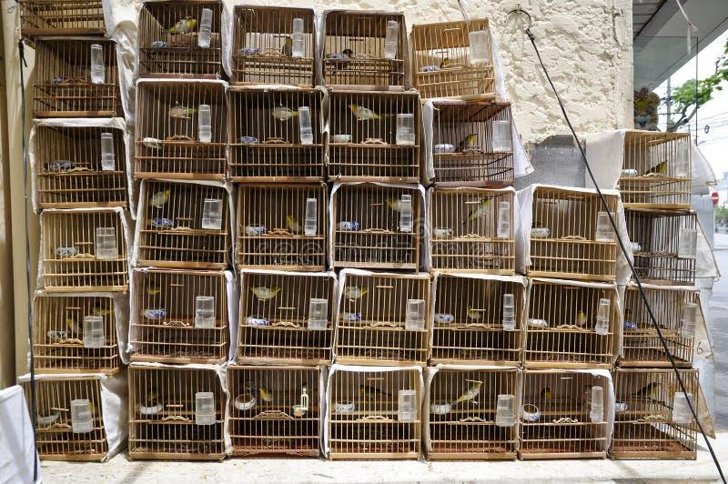 Kinesiska fågelburar - tappningstil arkivfoto