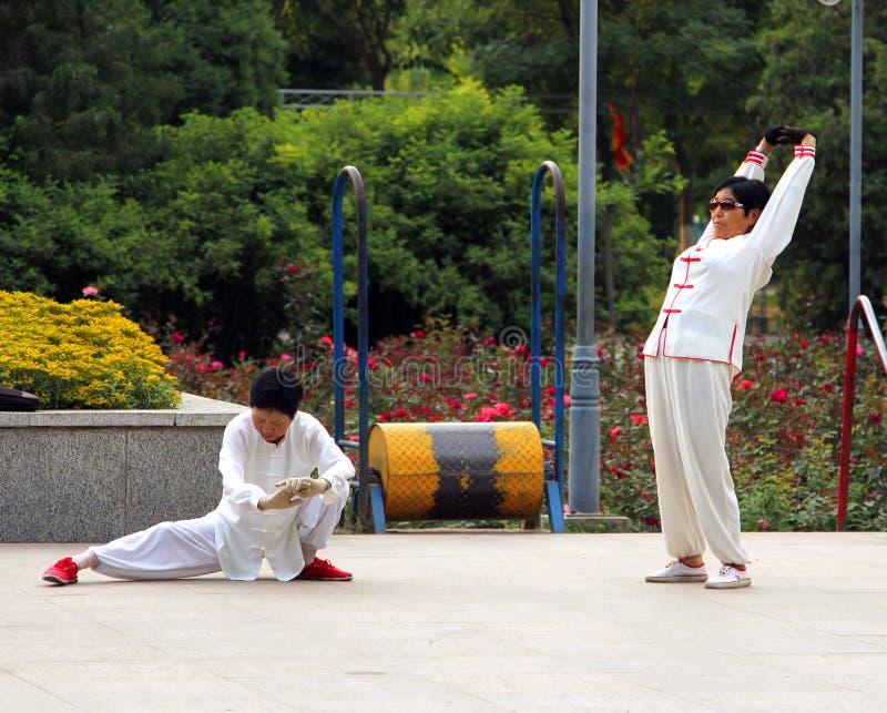 Kinesiska kvinnor som gör tai-chi i parkera fotografering för bildbyråer