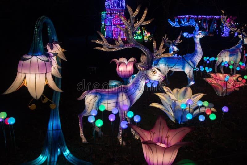 Kinesiska nya år lyktor royaltyfri bild