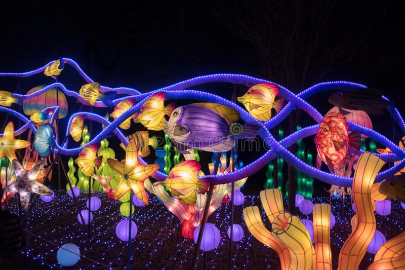 Kinesiska nya år lyktor royaltyfri fotografi