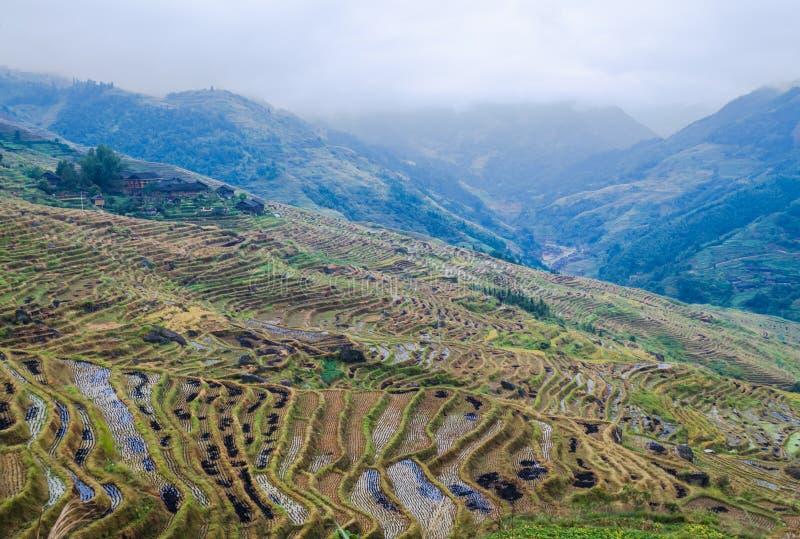 Kinesiska by- och risterrasser, Guilin, Guangxi, Kina arkivfoton