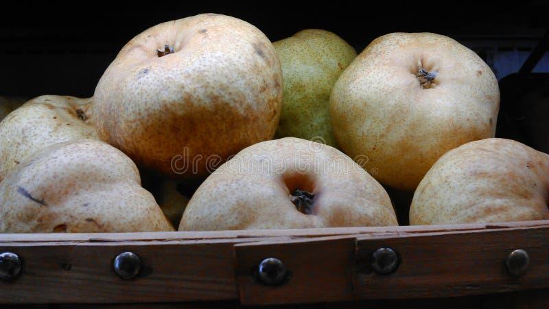Kinesiska pears royaltyfri fotografi