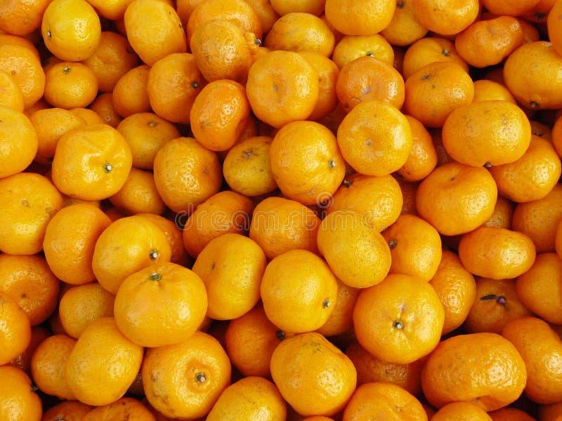 Kinesiska små apelsiner royaltyfria foton