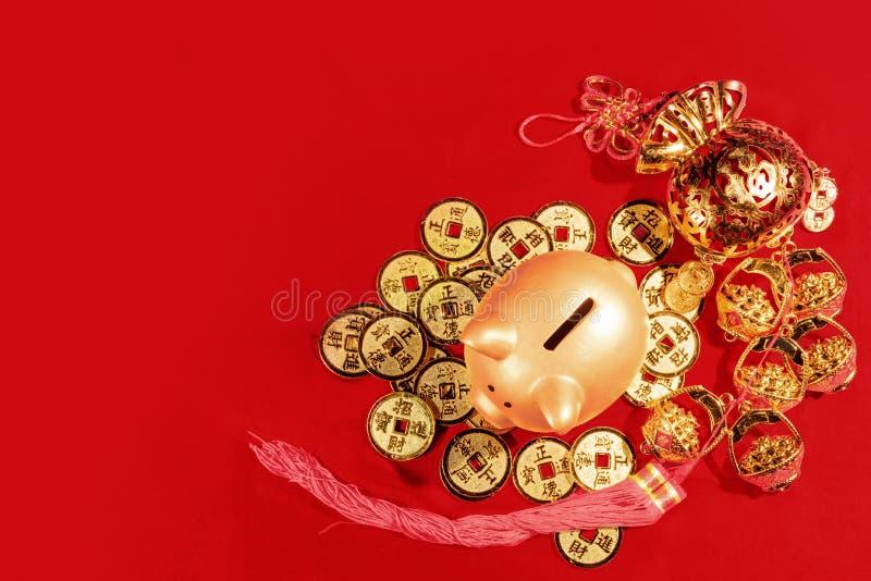 kinesiskt nytt år År av jordsvinet