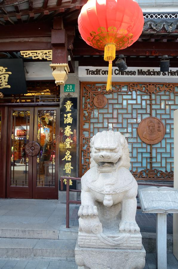 Kinesiskt nytt år i Shanghai royaltyfri fotografi