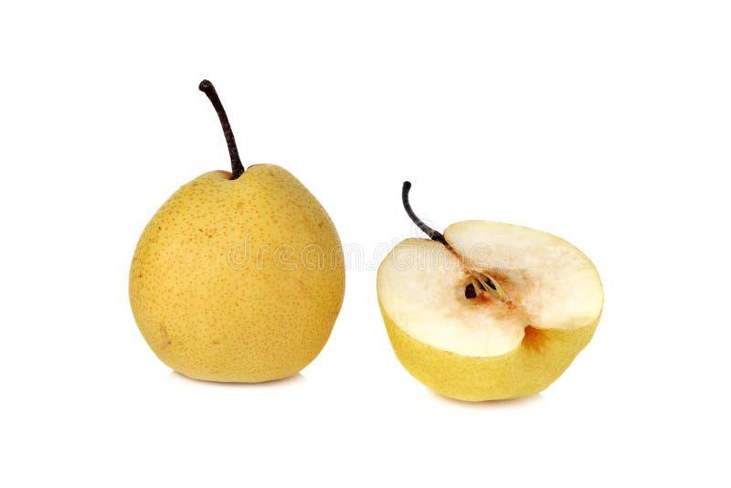 Kinesiskt päron eller Nashi päron med stammen på vit fotografering för bildbyråer
