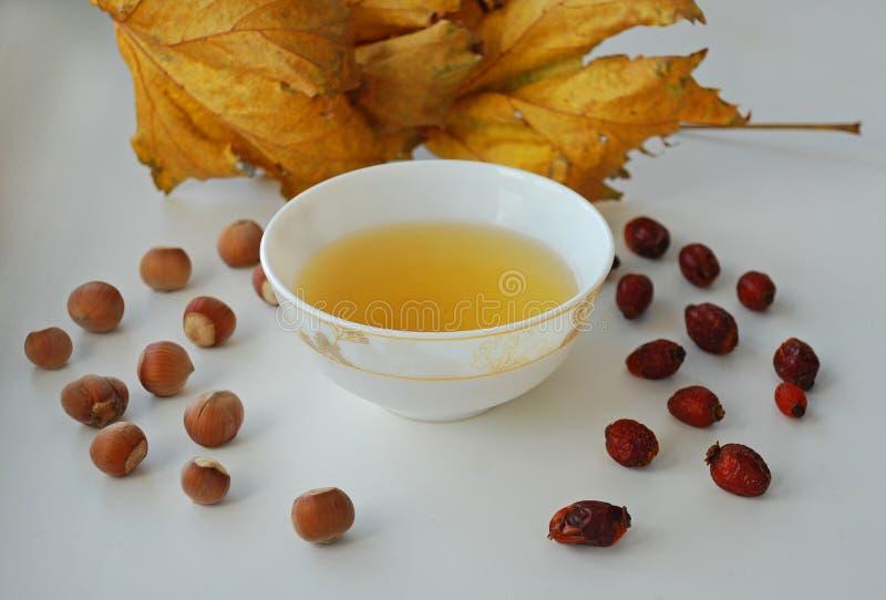 Kinesiskt te för ginsengoolong på en vit platta med muttrar, höstsidor royaltyfria foton