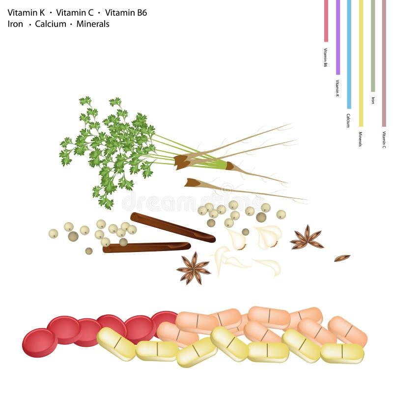 Kineskryddor med vitaminet K, C, B6 och mineraler vektor illustrationer