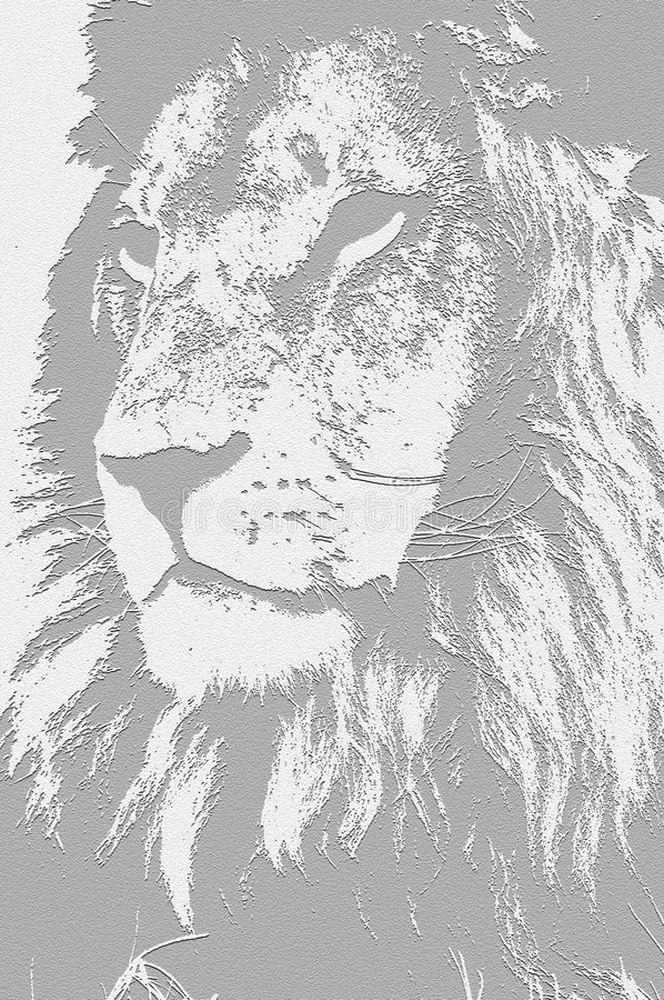 The King. His royal highness, the king of the jungle vector illustration