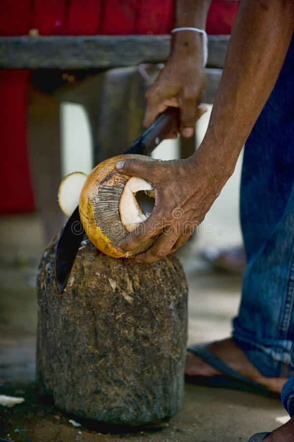 King Coconut Preparation Royalty Free Stock Image