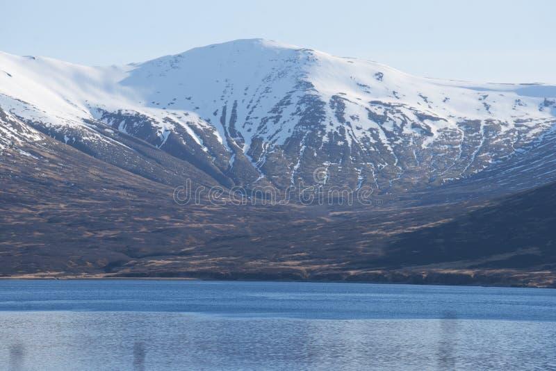 Download King Cove Alaska stock image. Image of city, aleutians - 115006571