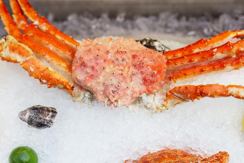 King crab on ice at street food festival royalty free stock photography