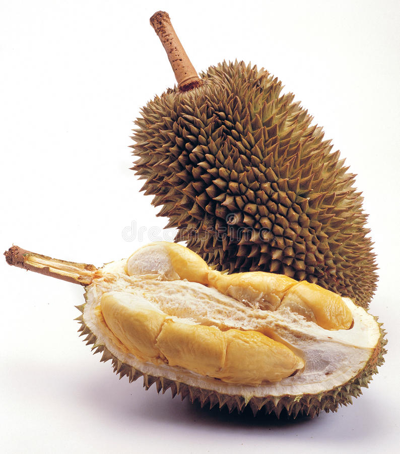 Download King of Fruit stock photo. Image of seasonal, plain, famous - 25285388