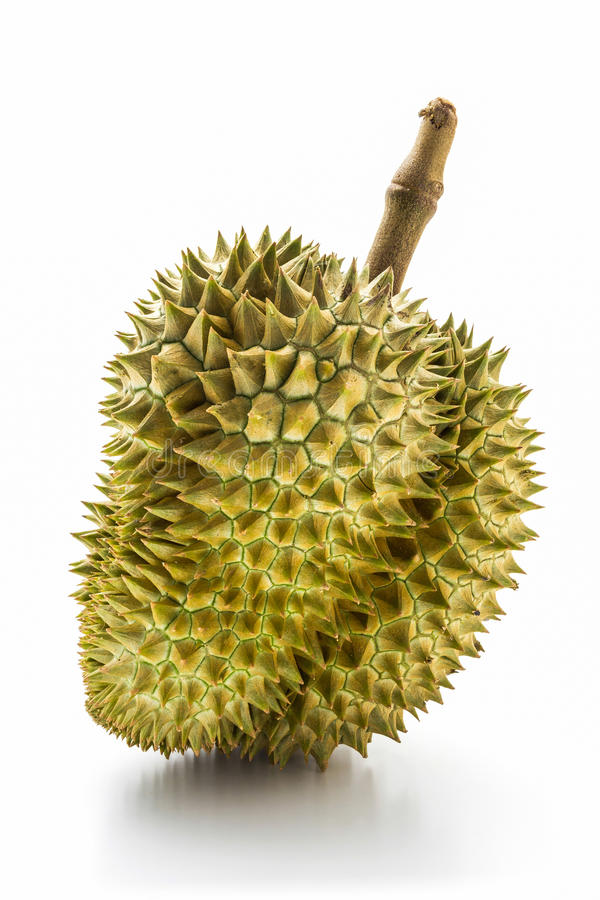 King of fruits, durian. royalty free stock photo