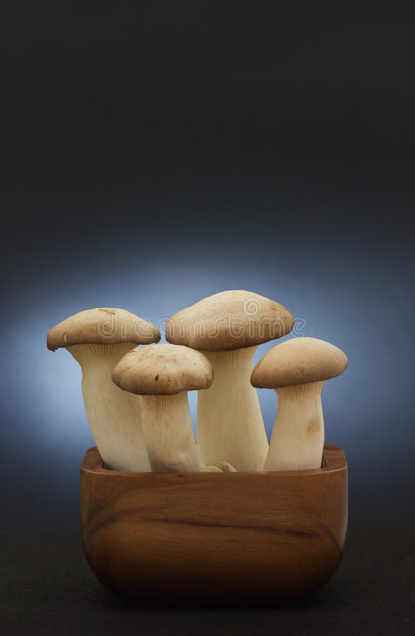 """Download King Oyster Mushroom stock photo. Image of """"wooden, ingredient - 31126000"""