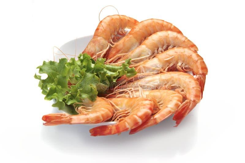 King prawns stock photo