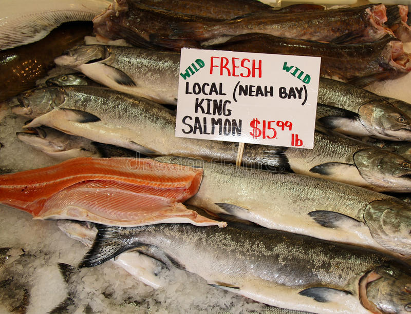 Download King Salmon stock image. Image of fresh, seafood, fish - 83722029