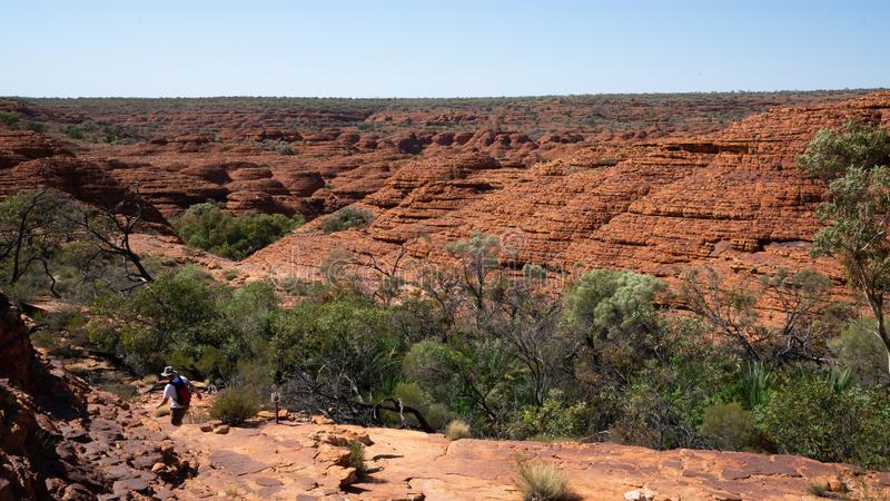 Kings canyon landscape with red sandstone domes during the Rim walk in outback Australia stock photo
