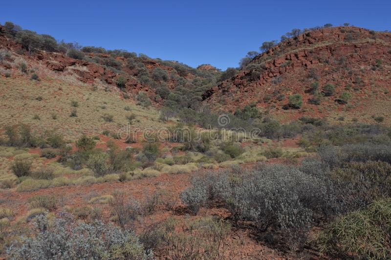 Kings Canyon in the Northern Territory Australia. Landscape view of Kings Canyon in the Northern Territory, Australia royalty free stock image