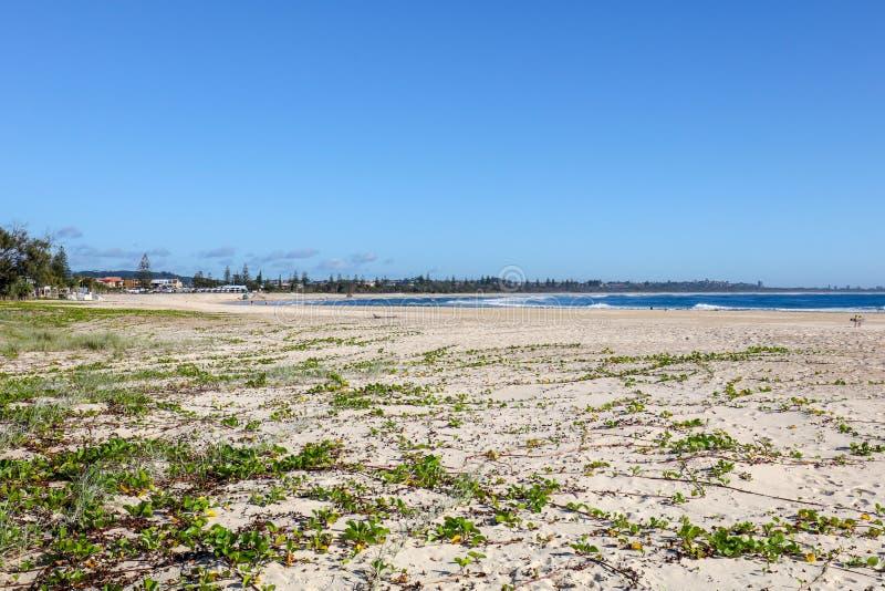 Kingscliff海滩澳大利亚 图库摄影