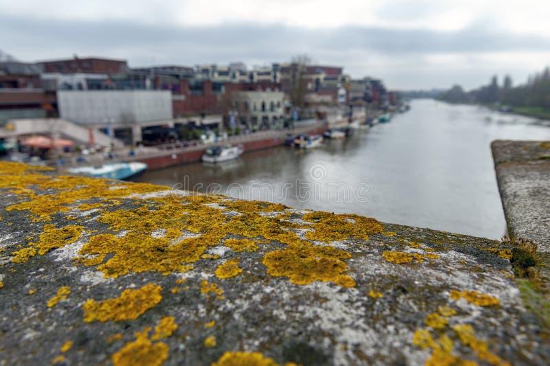 Kingston Bridge histórico sobre o rio Tamisa coberta com os líquenes do ouro, Inglaterra, Reino Unido foto de stock royalty free