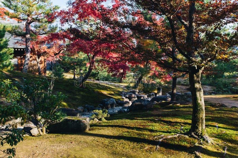 Kinkaku-ji świątynia z Czerwonym liściem w jesień sezonie zdjęcie royalty free