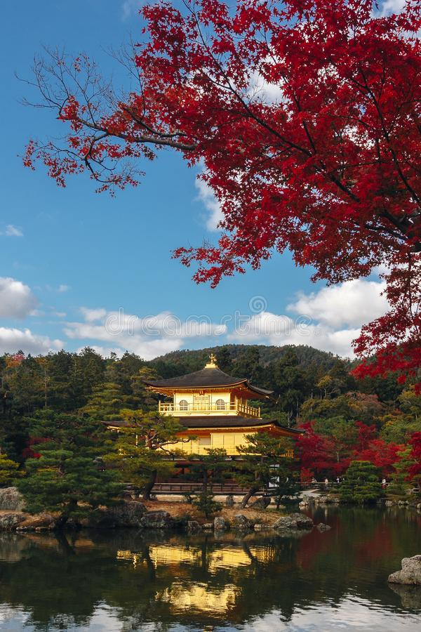 Kinkaku-ji świątynia z Czerwonym liściem w jesień sezonie obrazy stock