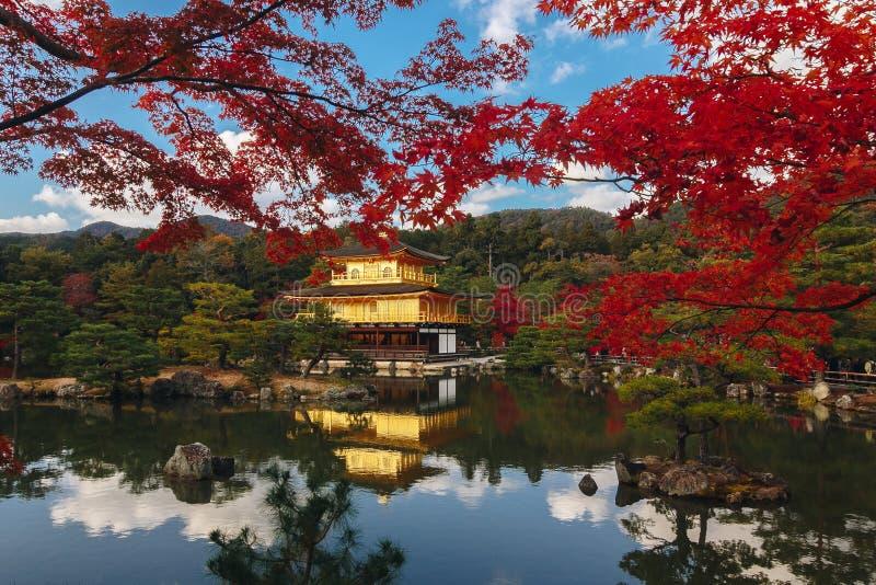 Kinkaku-ji świątynia z Czerwonym liściem w jesień sezonie zdjęcia royalty free