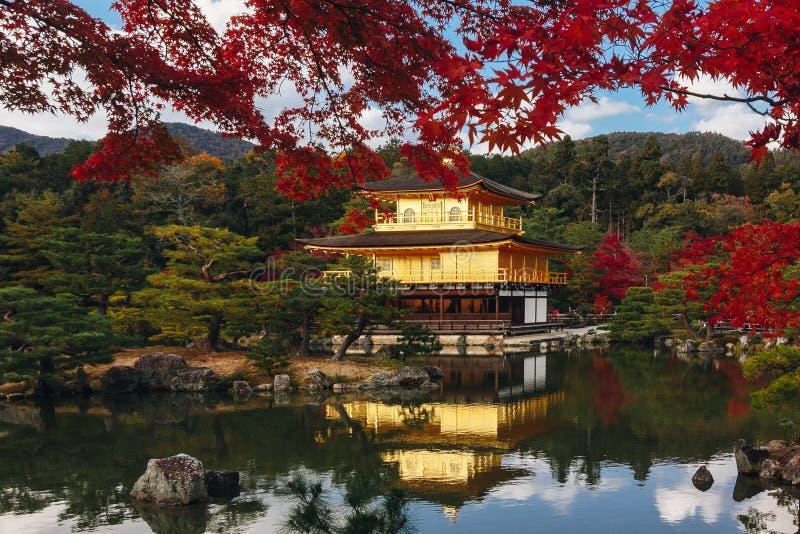 Kinkaku-ji świątynia z Czerwonym liściem w jesień sezonie fotografia stock