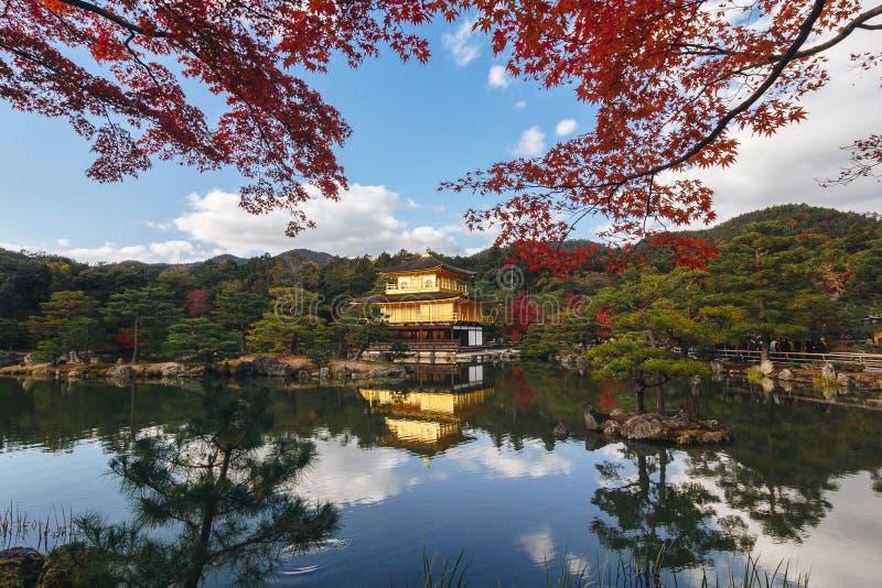 Kinkaku-ji świątynia z Czerwonym liściem w jesień sezonie obrazy royalty free