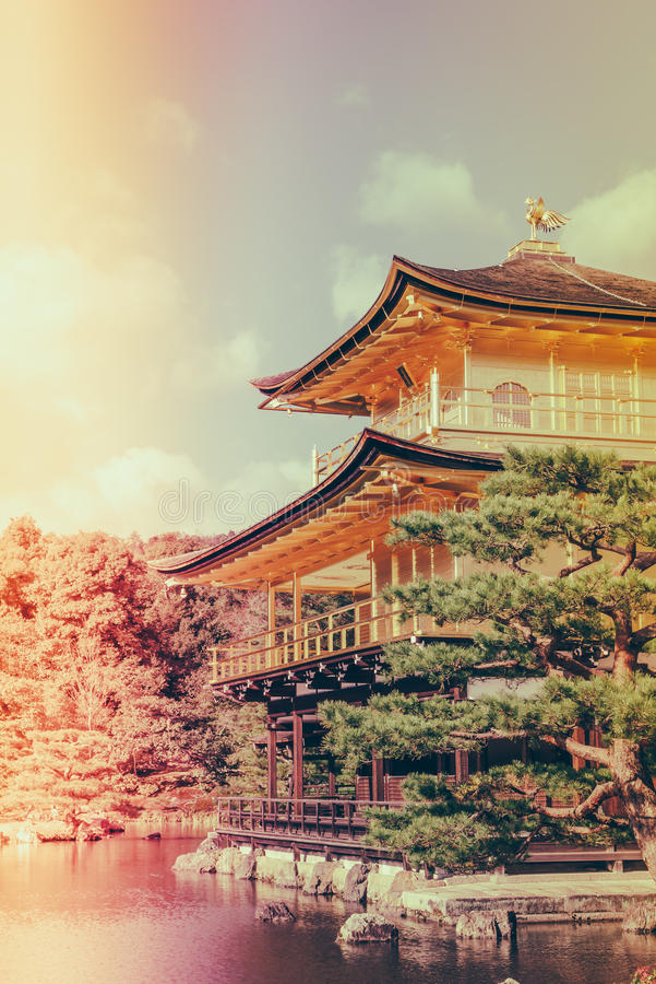 Kinkakuji寺庙金黄亭子在京都,日本(过滤器 库存照片