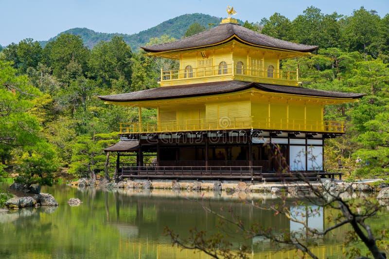 Kinkakuji金黄亭子是禅宗寺庙在京都北部,日本 库存图片