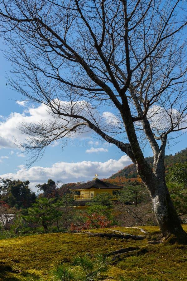 Kinkakuji в осени стоковое изображение rf