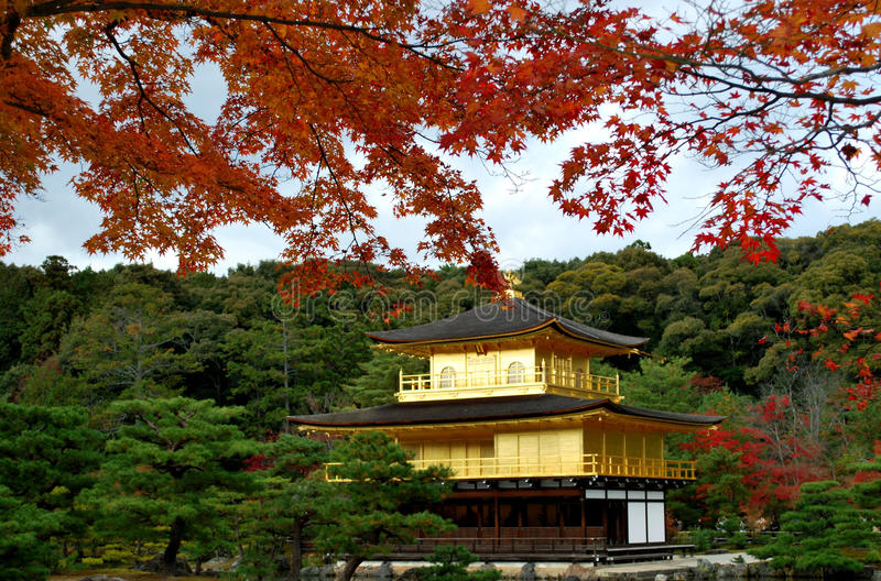 Kinkakuji in autumn royalty free stock photography