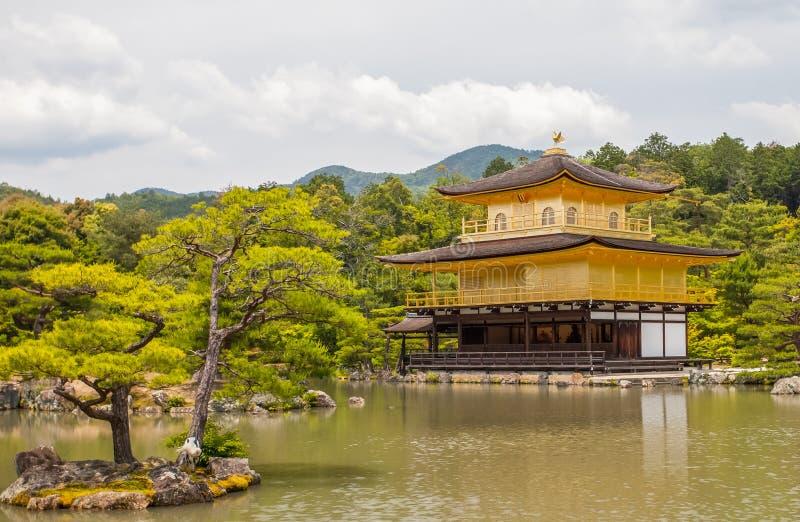 Kinkakuji (goldener Pavillion) stockbilder
