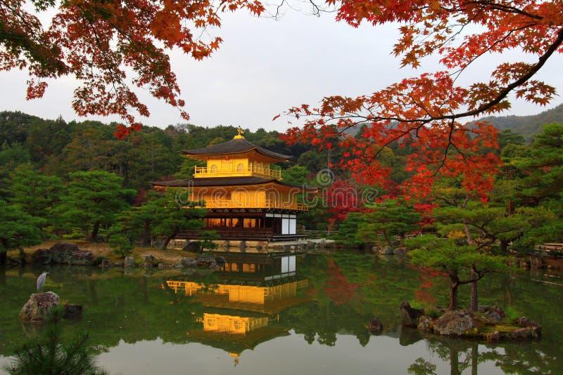 Kinkakuji - o pavilhão dourado famoso em Kyoto fotografia de stock royalty free
