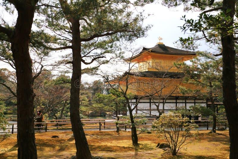 Kinkakuji Temple (The Golden Pavilion) stock image