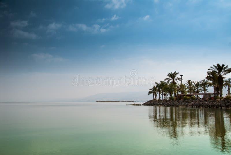 Kinneret, mare della Galilea, Israele, lago tiberias con le palme sull'acqua e sul cielo blu di verde di calma della spiaggia Pos immagine stock