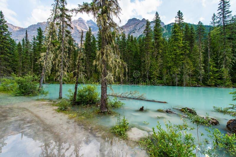 Kinney jezioro Kanada - góry, odbicia - zdjęcie royalty free