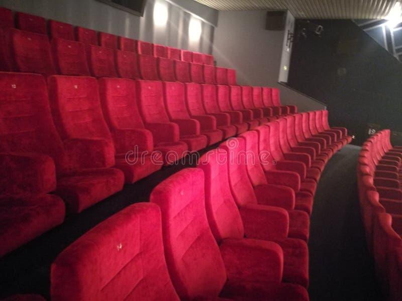 Kino sitzt rotem Purpur vor stockbild